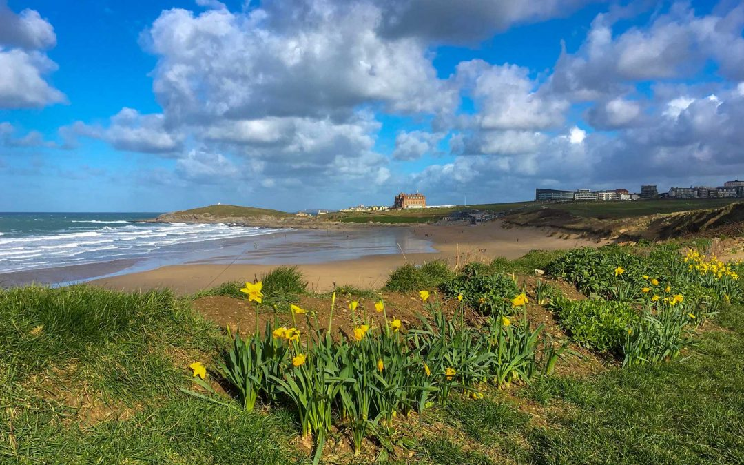 Spring comes early to Newquay, Cornwall
