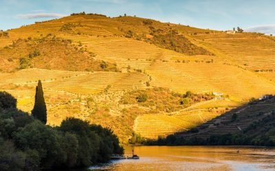 Douro River (The River of Gold) Portugal