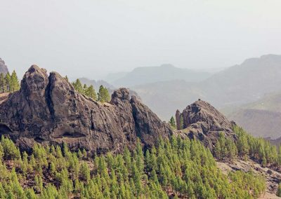 Mountains in Gran Canaria with pine trees