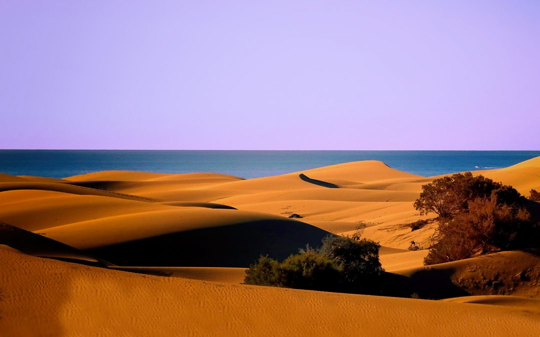 Mas Palomas: there's more to Gran Canaria than these huge dunes