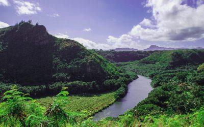 Kalepa Mountain Forest Reserve, Kauai