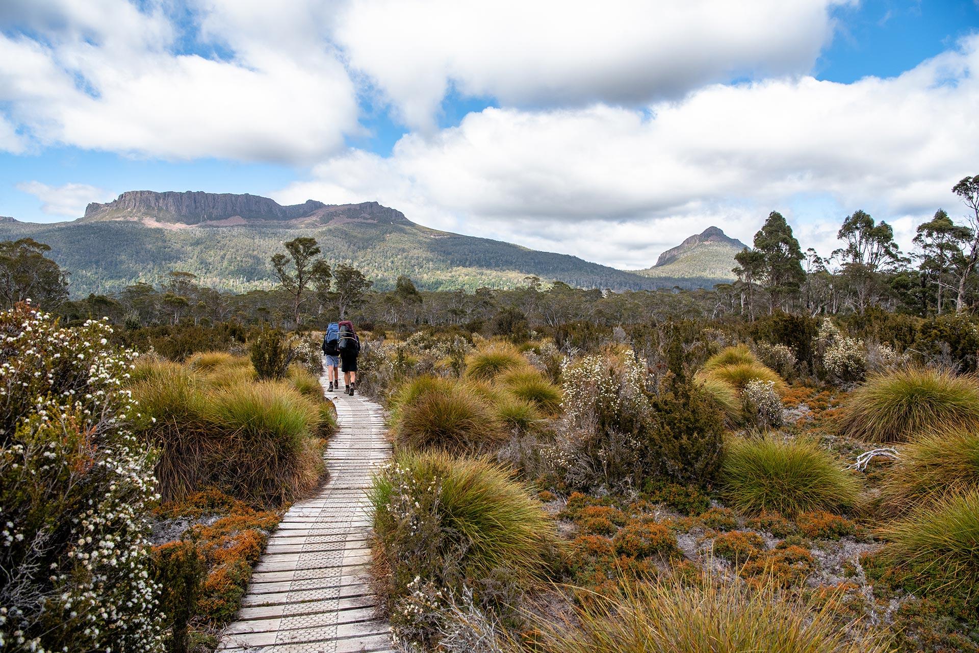 Overland Track, Tasmanian Wilderness World Heritage Area, Tasmania