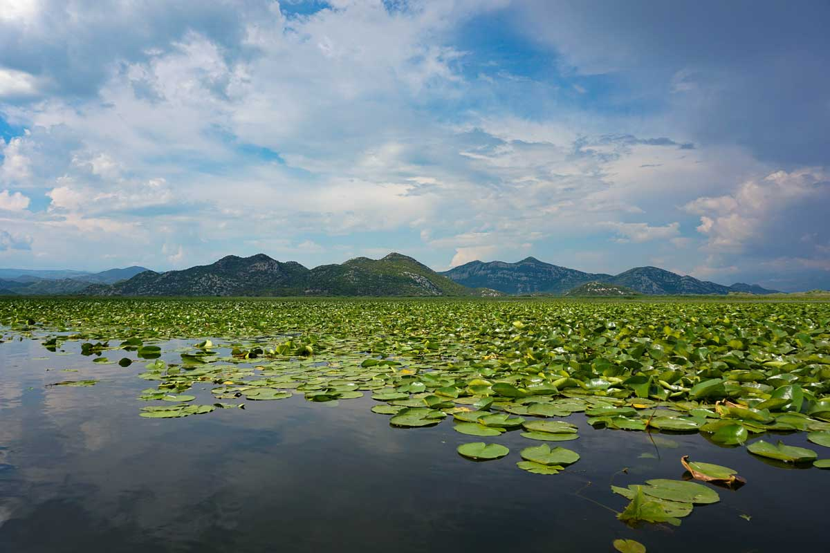 Lake Skadar with mountain view in the background. Credit: Jasmijn Wagenaar via Unsplash.