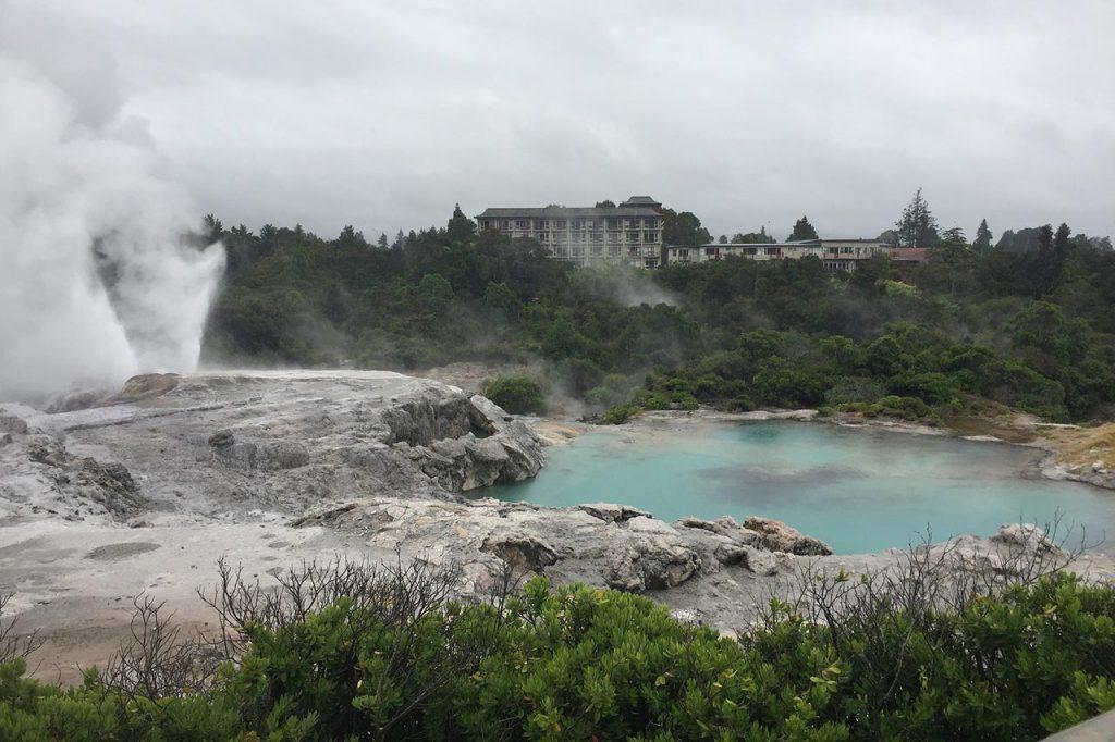 Geothermal geyser in Rotorua, New Zealand