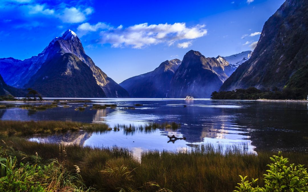 Two ideal regions for immersive excursions in New Zealand