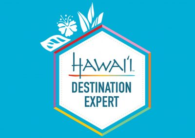 Hawaii Expert Certificates of Completion & Specialization Badges
