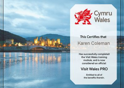 Visit Wales PRO Certificate