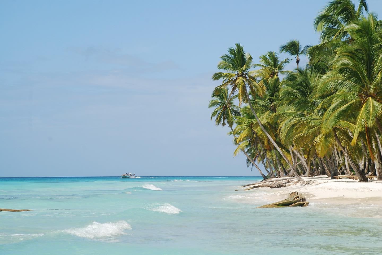 White sand beach on Saona Island, Dominican Republic