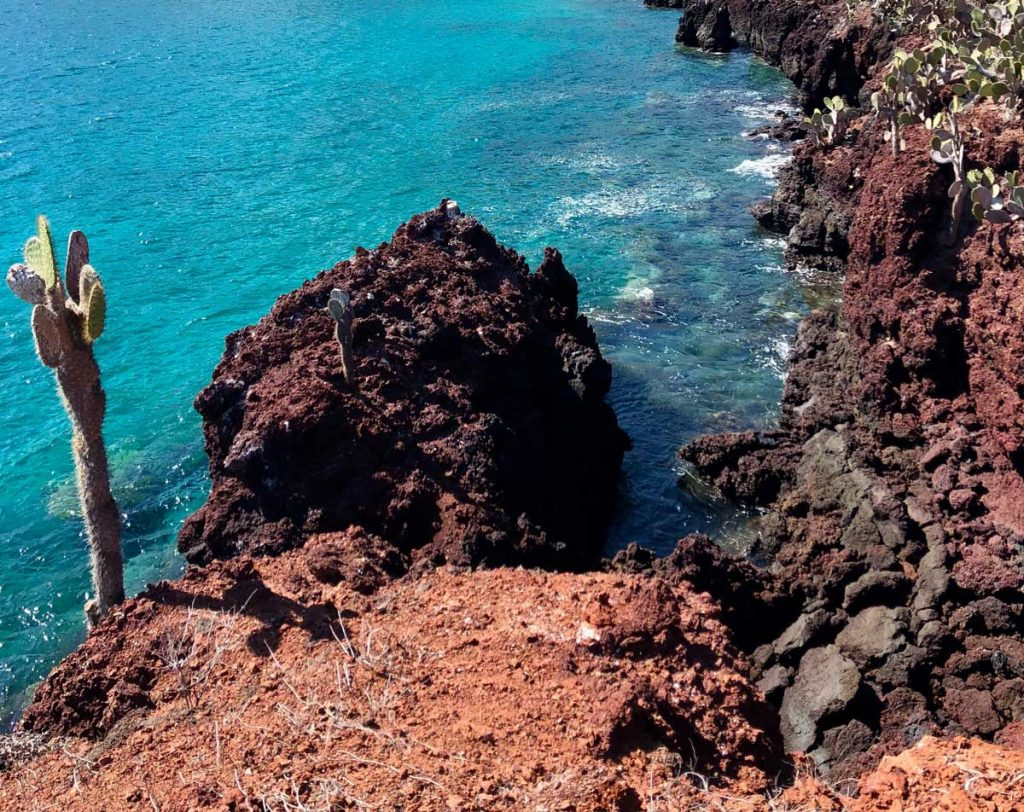 Galapagos volcanic rocks