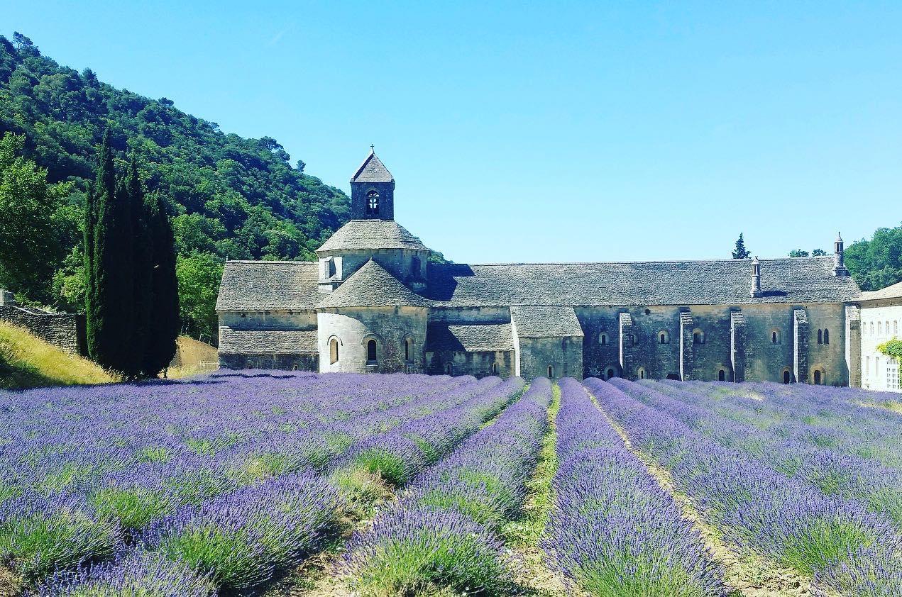 Sénanque Abbey near the village of Gordes