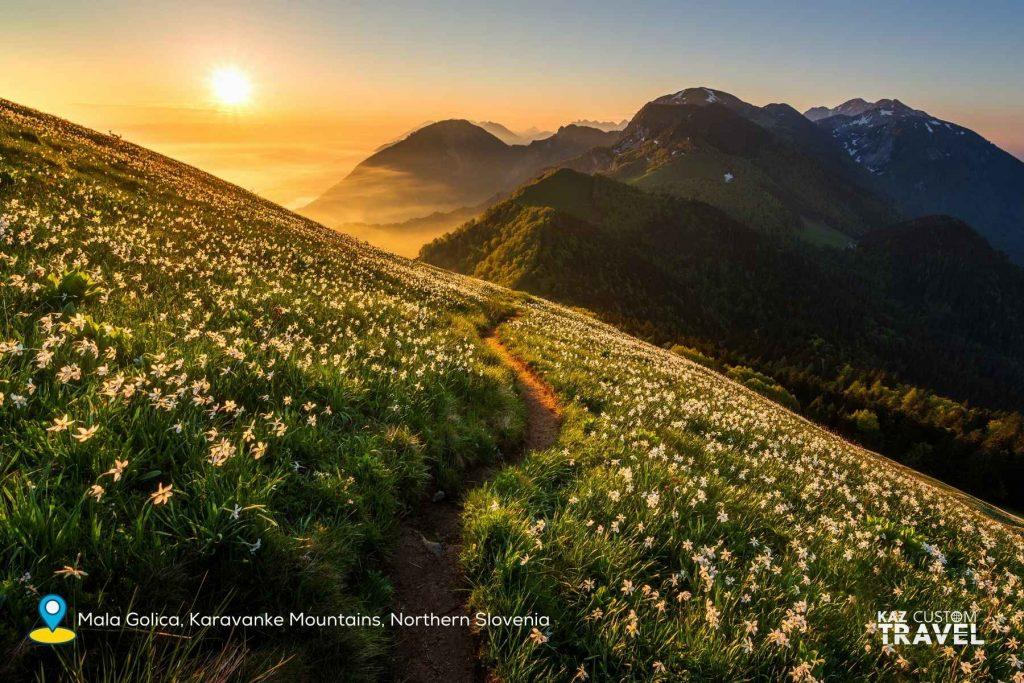 Golica, Karavanke Mountains, northern Slovenia